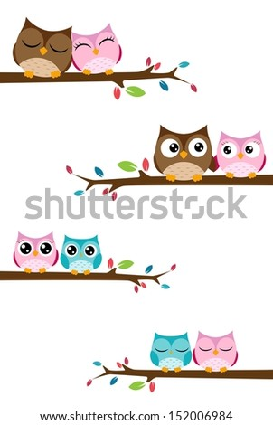 Couples owl on the branch