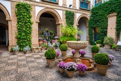 Courtyard garden of Viana Palace in Cordoba, Andalusia, Spain. Built in XV century. Viana Palace is a tourist attraction known for its 12 magnificent patios and gardens.