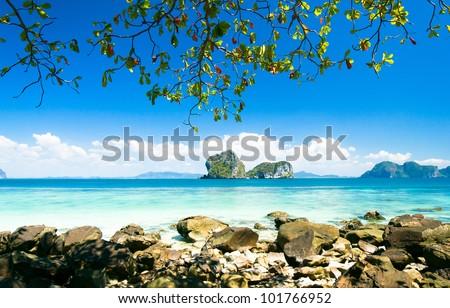 Cove View Day Dream