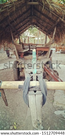 Cow carts to transport spices and agricultural products are still the mainstay of transportation in the village.
