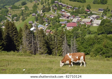 Cow grazing in the French Alps with the village of Bernex in the background. The Haute-Savoie department in the Rhône-Alpes region in south-eastern France.