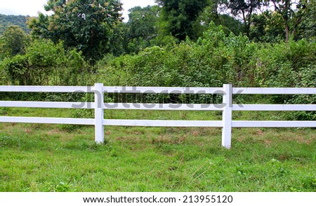 cow horse fence #213955120