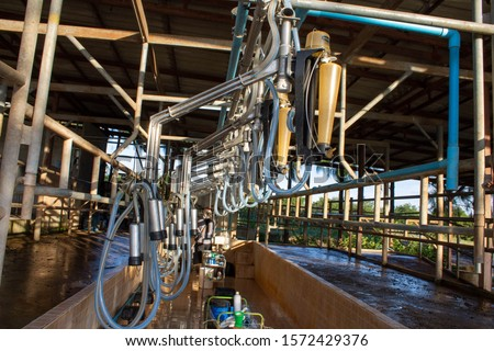 Cow Milking Machine with Pipe Line System