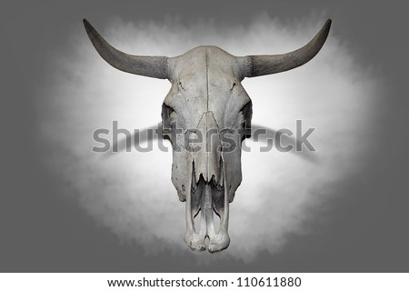 Cow skull on gray background.(Halloween image)