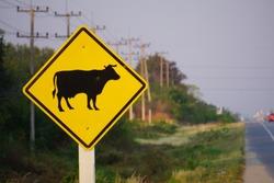 Cow warning traffic sign.