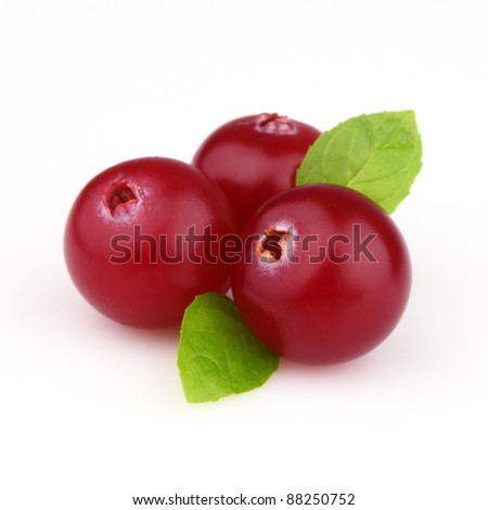 Cowberry with mint