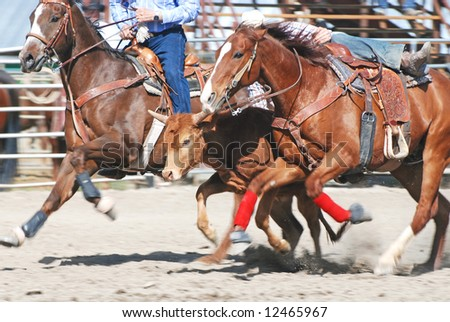 Cowboy competing in steer wrestling during rodeo.