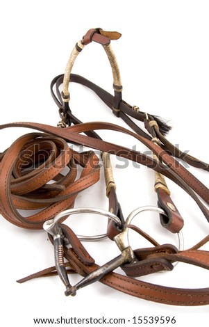 Cowboy gear - western riding equipment, Headstall