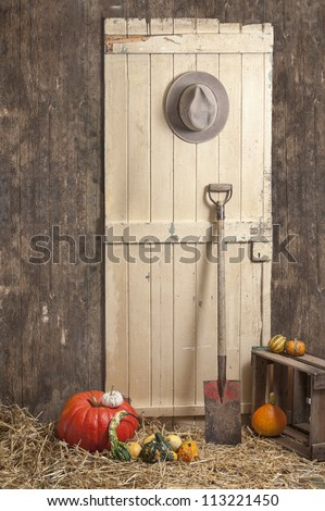 cowboy hat hanging on a barn door,  spade and pumpkins