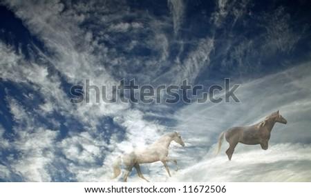 Cowboy Horse Heaven