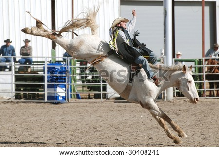 Cowboy on Bucking Bronc in rodeo.