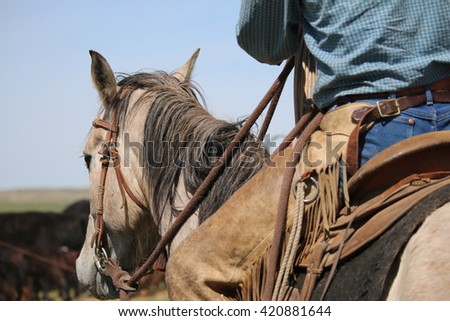Cowboy on his horse watching the herd.