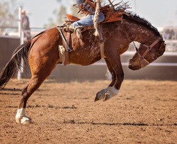 Cowboy riding bucking horse at country rodeo