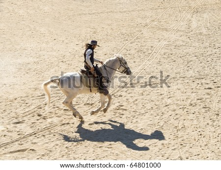 Horse galloping stock photo images 6341 horse galloping