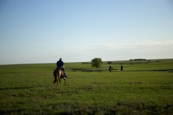 Cowboys going home after a hard days work riding away from the camera over green fields in evening light