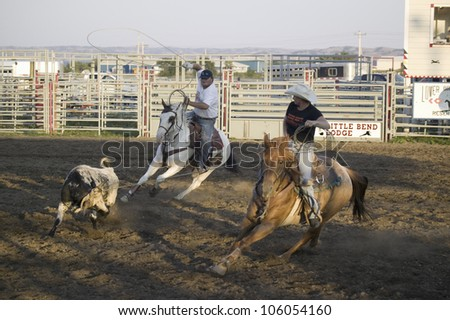 Cowboys lassoing cow at PRCA Rodeo at Lower Brule, Lyman County, Lower Brule Sioux Tribal Reservation, South Dakota, 58 miles Southeast of Pierre near Missouri River, August 10, 2007