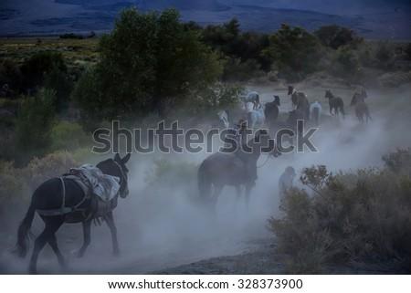 Cowboys riding a horse over the mountains