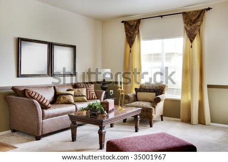 Cozy apartment living room with sofas