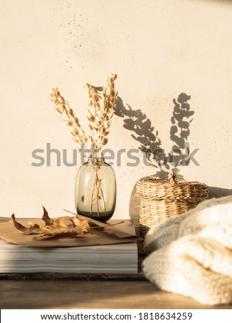 Cozy autumn home still life of dry flowers in vase, straw box, knitted blanket and magazines on rustic wooden table and shadows on the wall from the bright setting sun