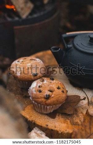 Cozy autumn outdoor breakfast for two - homemade muffins or cupcakes and cast iron kettle with tea with burning stove and stack of firewood on the background.