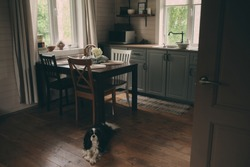 cozy cabin interior. Country grey kitchen with open shelfin in rustic style. Rural life concept