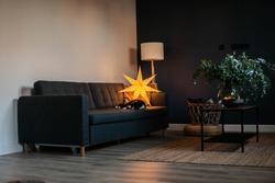 Cozy Dark blue room. Christmas star lighting. Grey sofa, minimalist style. Black cat. Hygge atmosphere.