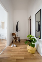 Cozy entry room with wooden floor and decorative plant in pot basket