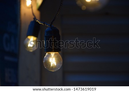 cozy light bulbs decorate the garden