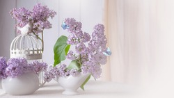 Cozy room interior with gentle blooming purple lilacs flower bouquet in porcelain china jug and birdcage on table, flying butterflies, tender romantic spring home decor in soft morning light.