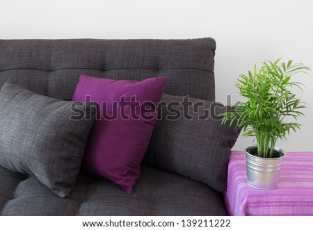 Cozy sofa decorated with cushions, and green plant in metal pot.