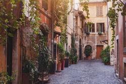 cozy street in Rome, Italy