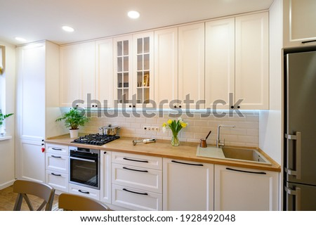 cozy well designed modern kitchen interior with appliances and carpet