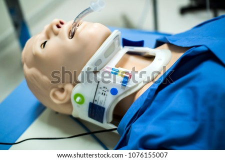 CPR SIMULATOR / AIRWAY MANAGEMENT / WHOLE BODY
