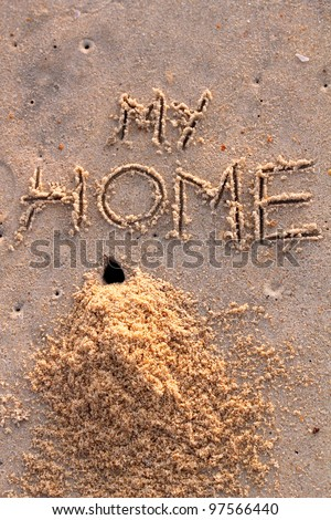 Crab hole and a pile of sand with words my home on a beach - stock photo