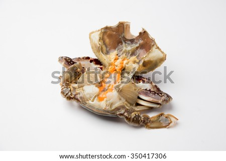 crab isolated on white background #350417306