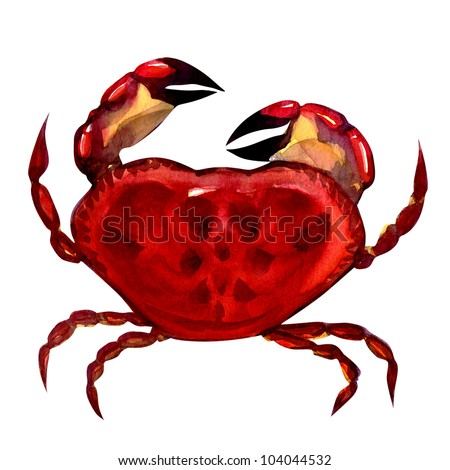 crab. watercolor painting on white background