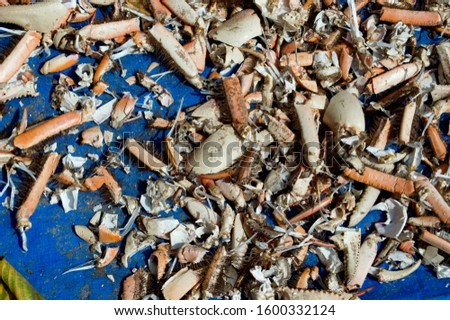 Crabs being picked for consumption