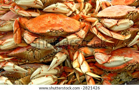 crabs on sale at a local market in san francisco