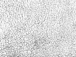 Crack texture of white leather, abstract background.