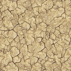 Cracked Brown Soil. Seamless Tileable Texture.