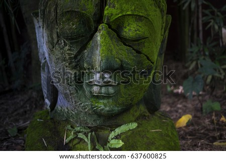 cracked buddha head statue cover by green plant bailnese style