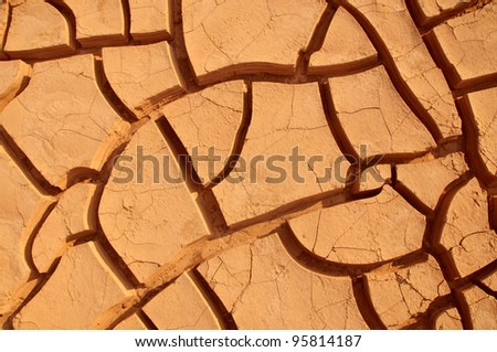 cracked clay ground into the dry