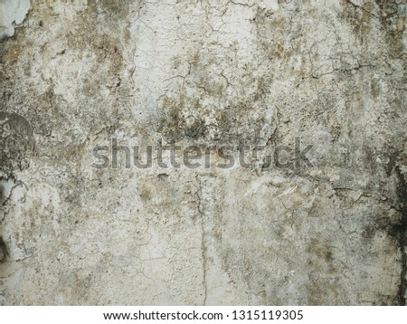 cracked concrete vintage wall background,old wall #1315119305