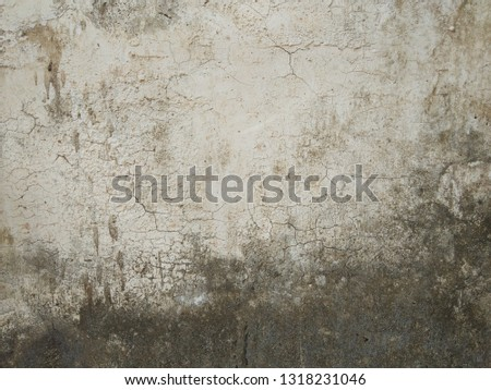 cracked concrete vintage wall background,old wall #1318231046