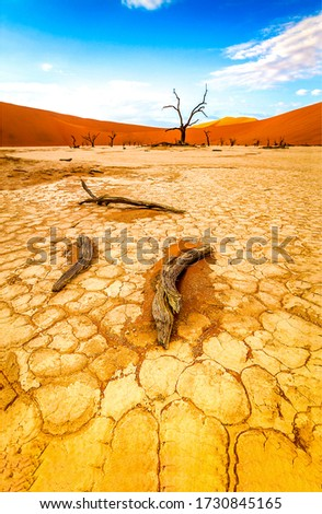 Cracked desert land scene view. Desert land view. Cracked desert land