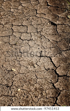 Cracked Dirt BackgroundCracked Dirt Background