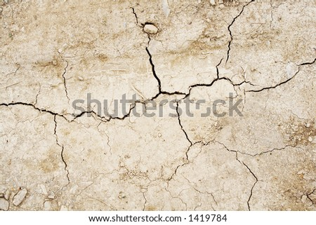 Cracked dried earth texture