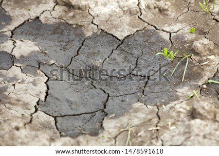 Cracked dry dirt flat surface, abstract texture, copy space background, retro pattern.