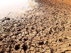 Cracked dry soil due to drought and degradation of exposed soil