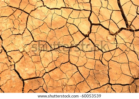 Cracked earth in dry desert.